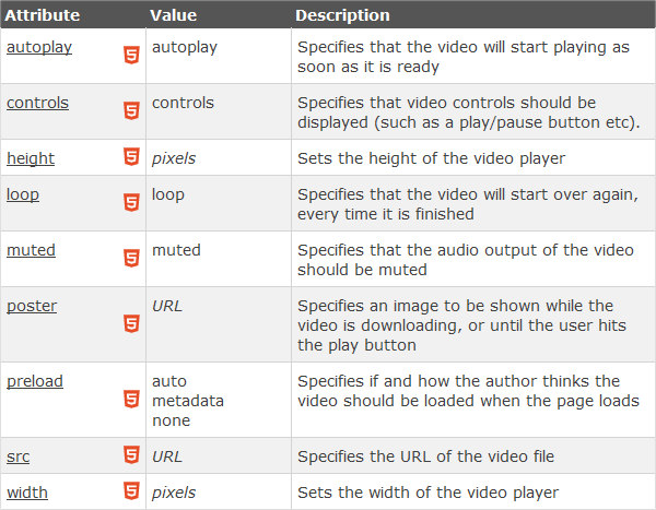 Video tag attributes